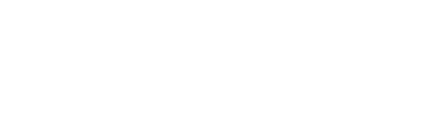startitup group logo