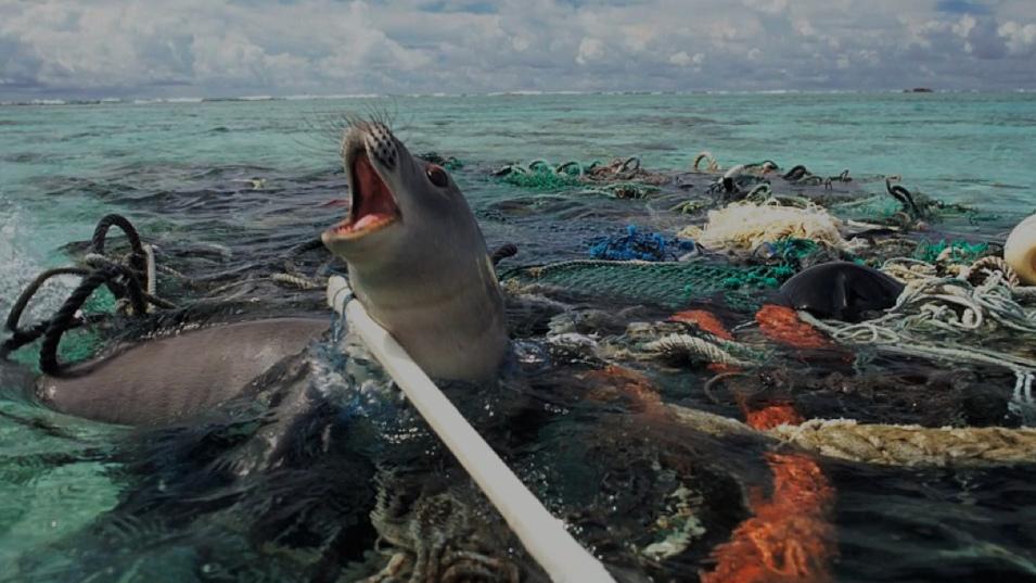 54f3fff5c9 Adidas predstavuje revolučné tenisky z oceánskeho odpadu!