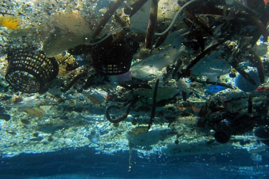 edaa04c03c ... svetovým vodám veľké problémy a vo veľkom kántria ich zvieracie  obyvateľstvo. Napríklad len morských cicavcov majú plasty ročne na svedomí  100 miliónov.