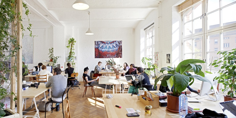 agora-Co-working-Pullover-copy