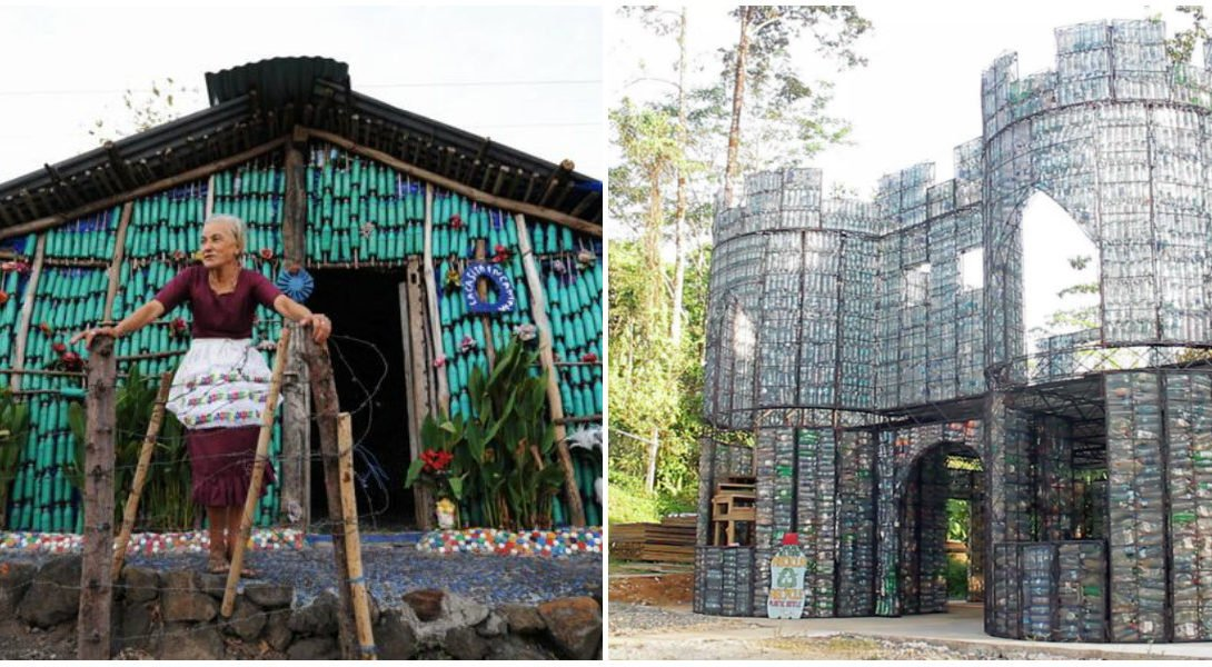 collage village