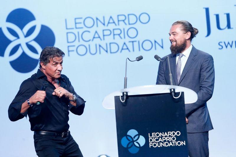 dicaprio foundation