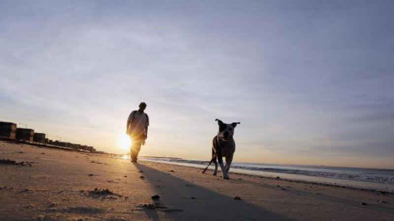 man-walking-dog-getty