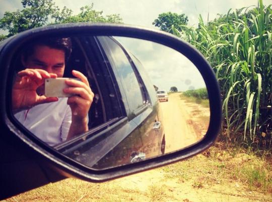 pavol-sugarcane