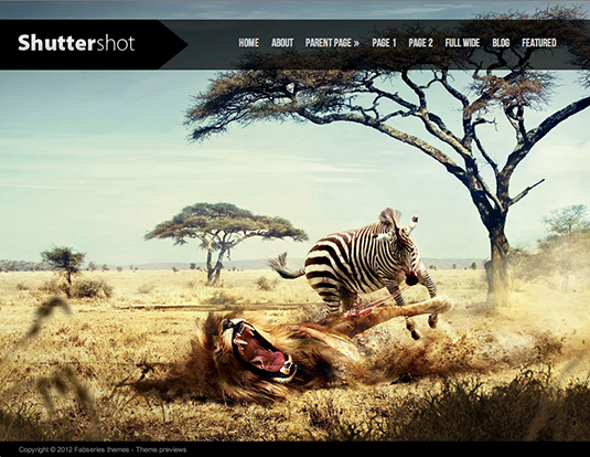 Free WordPress themes: Shuttershot