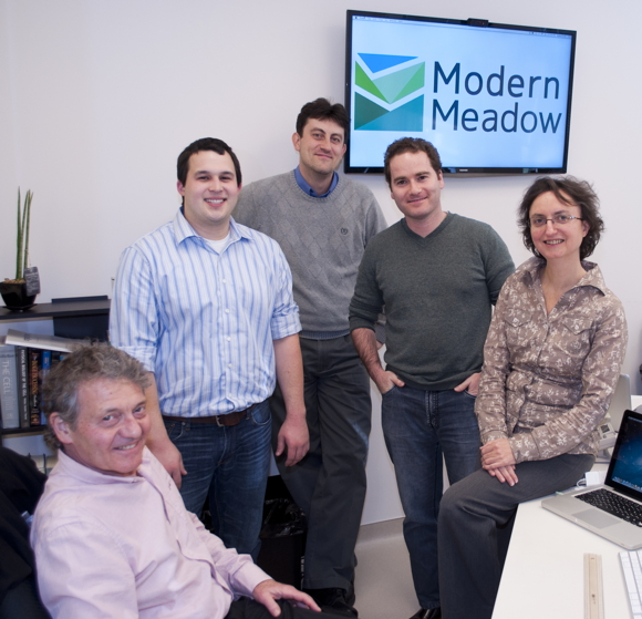 modern meadow team