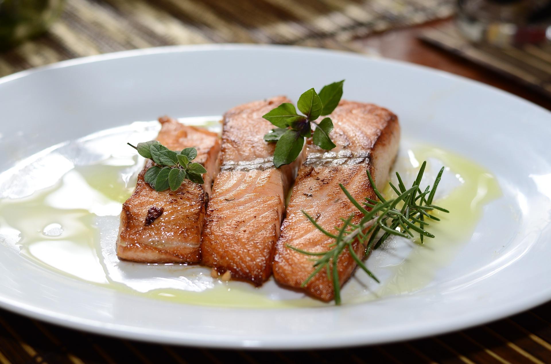 salmon-774482_1920