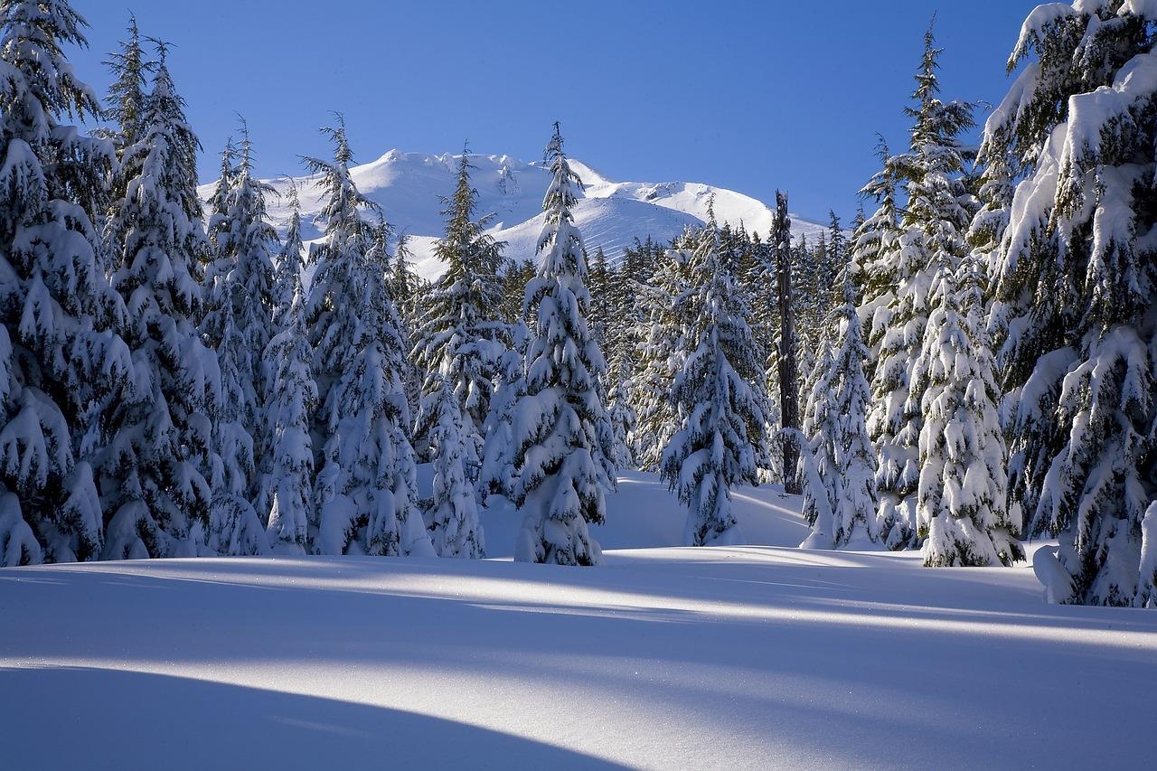 snow-1480921_1280