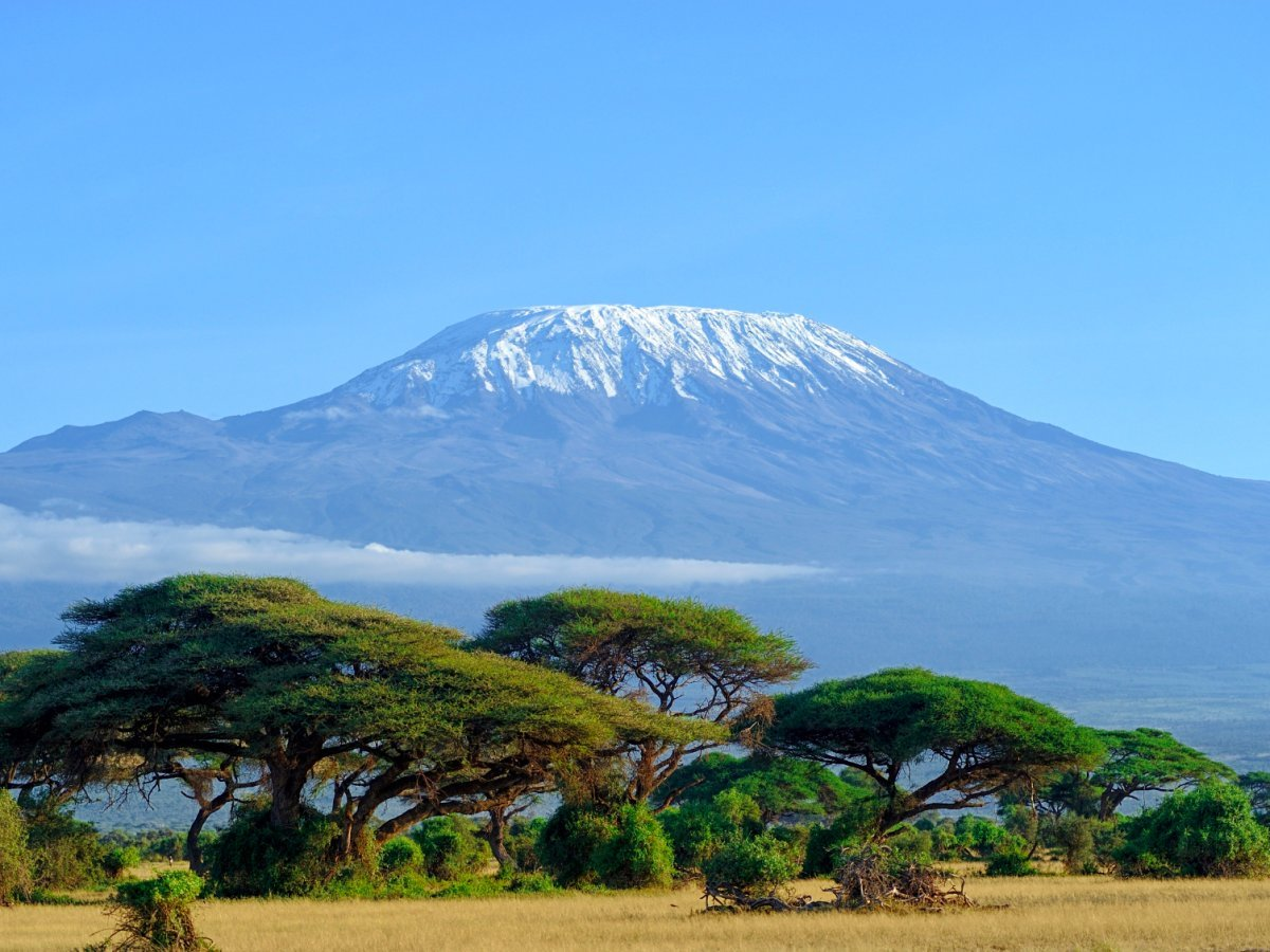 the-picturesque-snow-that-tops-mount-kilimanjaro-in-tanzania-may-not-be-there-much-longer-in-the-years-between-1912-and-2007-kilimanjaros-ice-sheet-shrunk-by-a-whopping-85