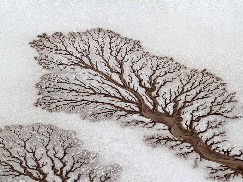 1761105-800-1462864138-fractal-patterns-in-dried-out-desert-rivers