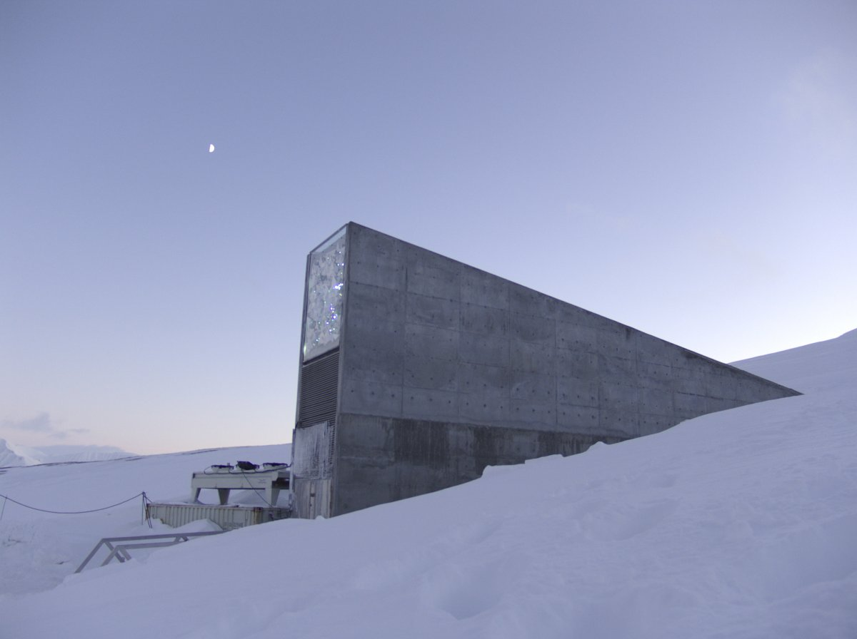 82-the-beautifully-designed-svalbard-global-seed-vault-stores-hundreds-of-thousands-of-seeds-with-the-aim-of-protecting-them-in-the-event-of-a-global-apocalypse
