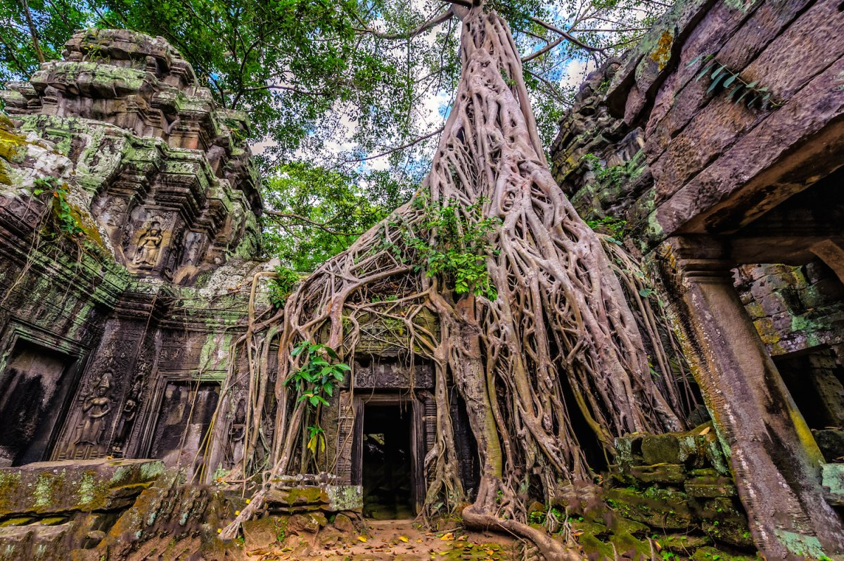 89-ta-prohm-temple-is-one-of-over-1000-temples-in-siem-reap-cambodia-it-was-used-in-the-filming-of-tomb-raider