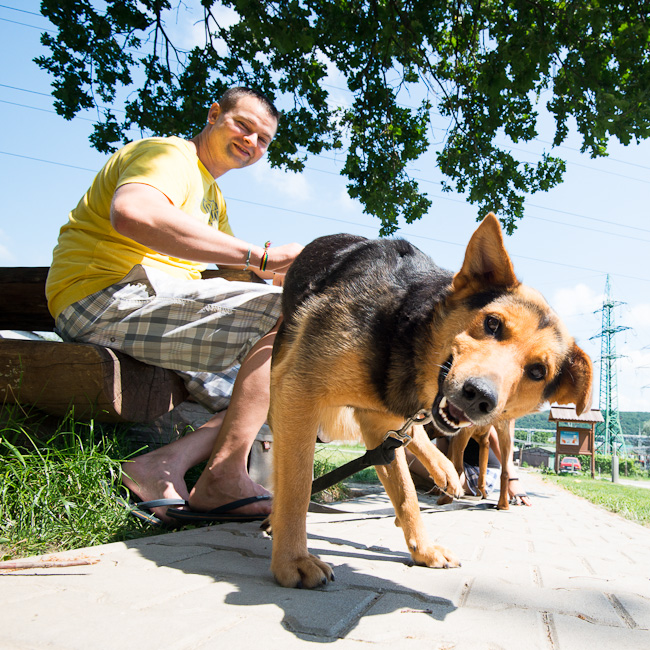 Vencenie-psov-sloboda-zvierat-9