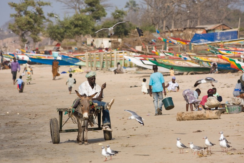 fun-earth-science-facts-for-kids-on-gambia-image-of-a-gambian-beach-e1394694480674