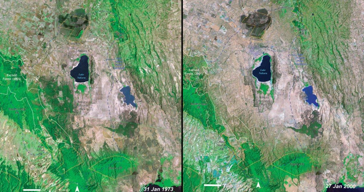 deforestation-of-lake-nakuru-national-park-kenya-1973-vs-2000