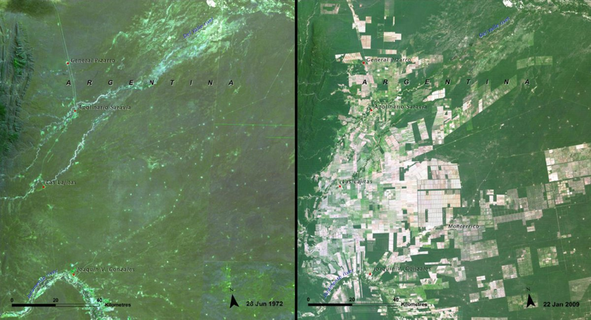deforestation-of-the-salta-forest-argentina-1972-vs-2009