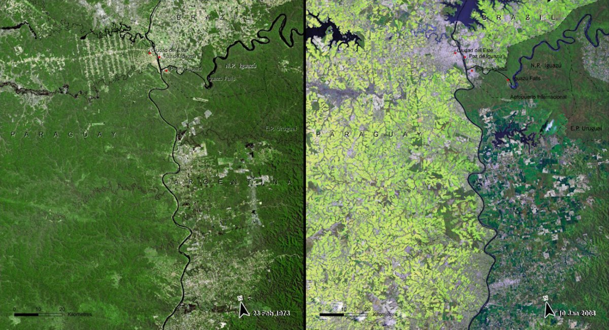 deforestation-of-the-south-american-atlantic-forest-paraguay-1973-vs-2008