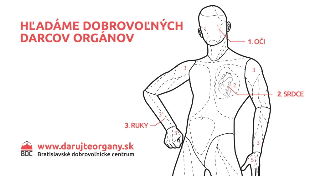 bdc-organy