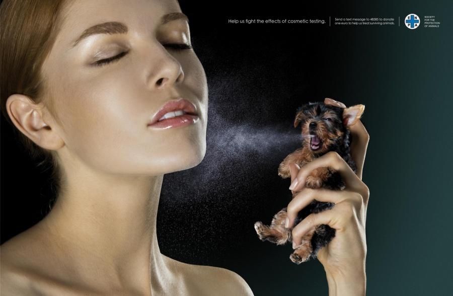 377905-900-1451984288-enpa-non-profit-national-board-for-animal-protection-spray-print-258879-adeevee