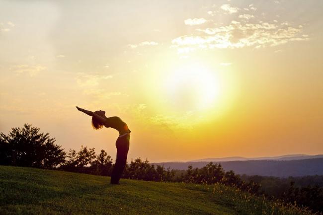 7727410-kailash_integral_yoga-1478127124-650-6780b0b574-1479806506