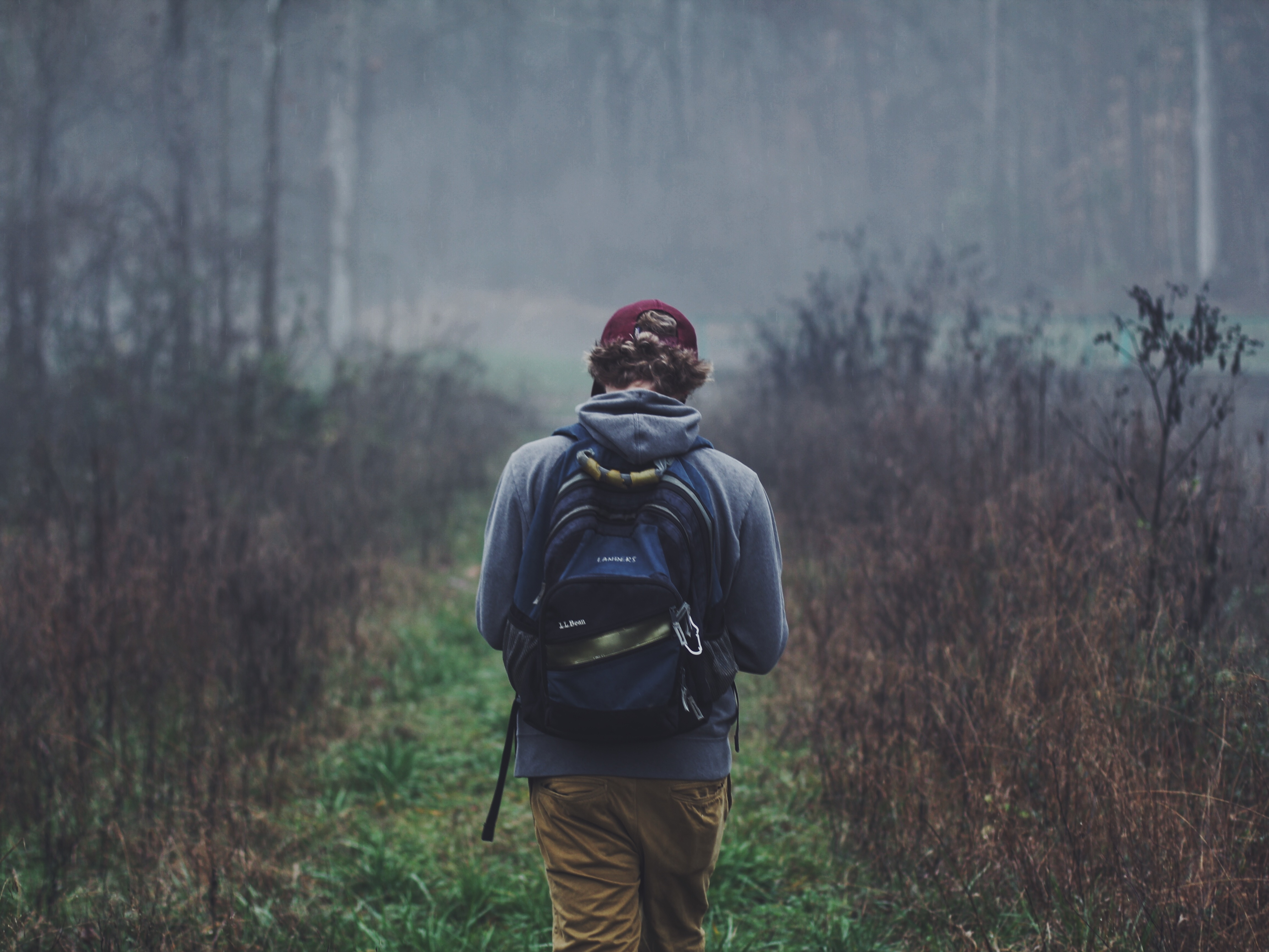boss-fight-free-high-quality-stock-images-photos-photography-man-forest-backpack
