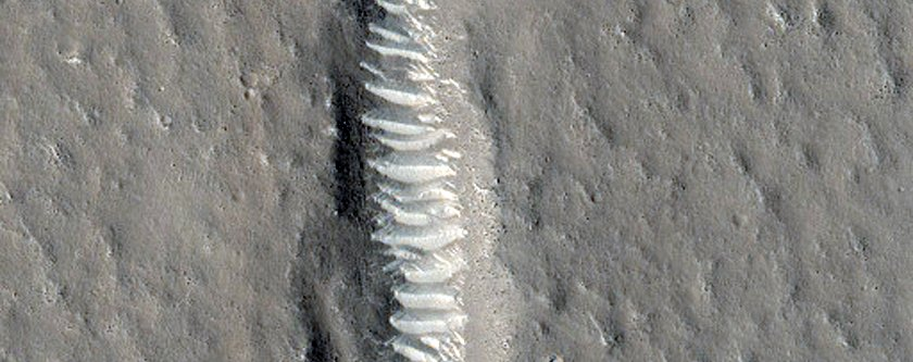 fractures-in-utopia-planitia-line-up-eerily-neatly-1