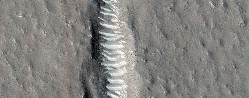 fractures-in-utopia-planitia-line-up-eerily-neatly-1