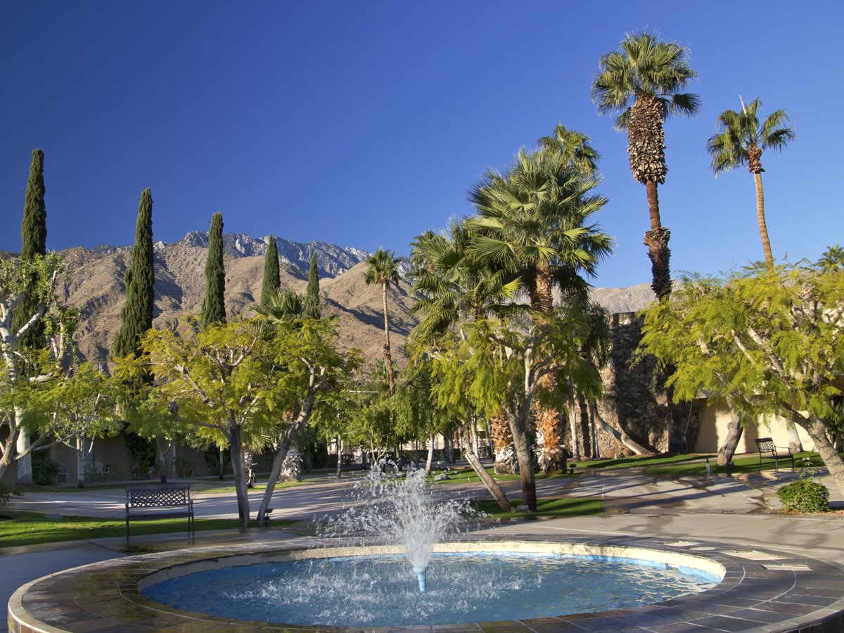 instead-of-los-angeles-go-to-palm-springs