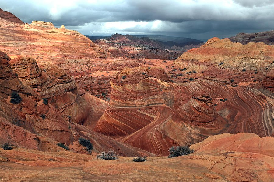 north-coyote-buttes-darryl-wilkinson