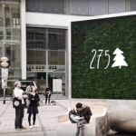 High-tech: machová stena na čistenie vzduchu v sebe skrýva silu 275 stromov