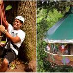 Peter Garčár vybudoval uprostred džungle v Kostarike stromodom, ktorý sa stal prosperujúcim biznisom