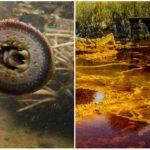 10 najnebezpečnejších vôd sveta, o ktorých si dodnes ani len netušil a mohli by ťa stáť život