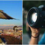 Takto to vyzerá, keď filmovanie Slovenska dronom prekazia holuby alebo turisti z Kanady