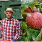 Dunajské jablká ukazujú, ako z rodinnej firmy urobiť prosperujúci jablkový biznis
