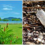 Toto tu ešte nebolo! Kostarika chce zakázať všetky jednorazové plastové výrobky