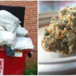 V USA ti dajú marihuanu aj za upratanie chodníka