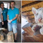 Slováci zachraňujú zvieratá z cirkusov a dávajú im nový domov vo svojom jedinečnom parku