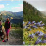 Slováci dnes na Chopku vysadia tisícky stromov avyčistia prírodu od odpadu