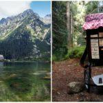 Pre návštevníkov Tatier vytvoril automat na medovinu. Takto verí v poctivosť ľudí