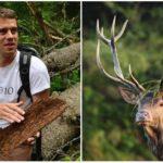 Erik Baláž točí filmy v lone prírody, aby ochránil aj posledný kúsok slovenskej divočiny
