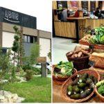 Ešte viac kvalitných potravín v Bratislave! Tento mesiac Yeme otvára tretiu predajňu