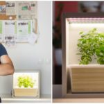 Slovenský študent vyvinul Grow Box, vktorom si bez pôdy vypestuješ čokoľvek a kdekoľvek