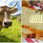 Slovensko zasiahla maslová kríza. Čo ju spôsobilo?