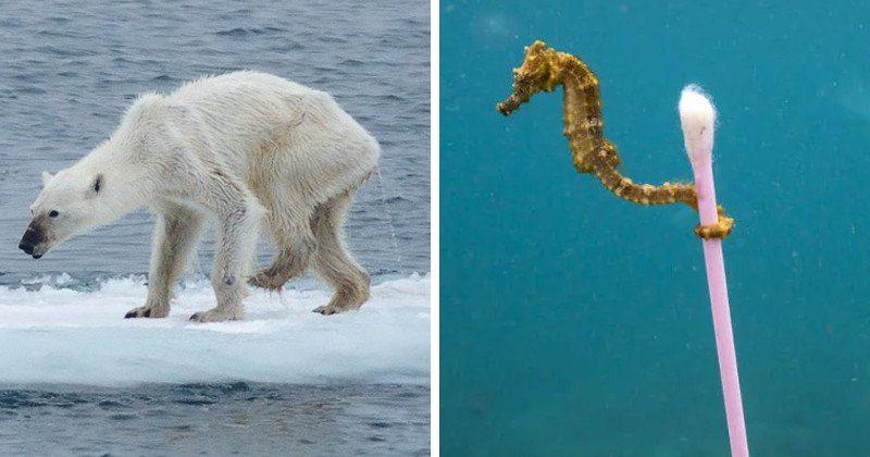 klimaticke-zmeny-2017-prez
