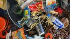 rubbish-1576990_1280