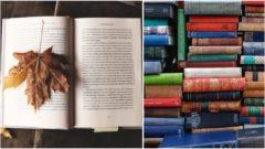 knihy-na-jesen-1090x610