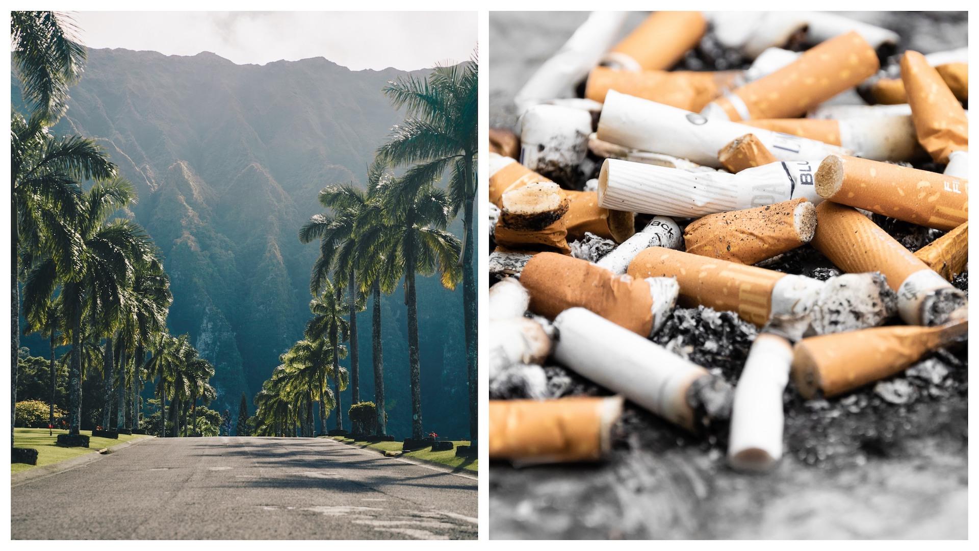 Vlastné fajčenie videá