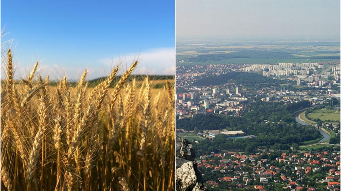 Ilustračný obrázok (pixabay.com, wikikedmia Igor Marhevský)