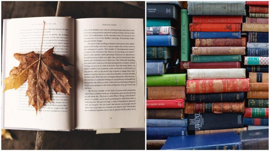knihy na jesen
