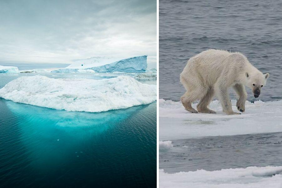 Severný pól bude bez letnej ľadovej pokrývky pred rokom 2050